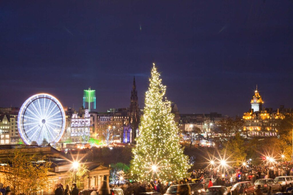 Real Christmas Trees in Edinburgh