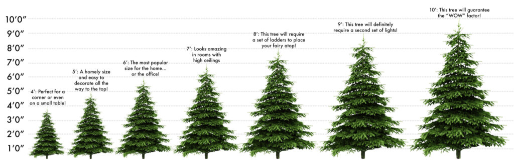 standard delivery we offer christmas tree - How Long Does A Christmas Tree Take To Grow